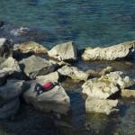 Skale Rocks